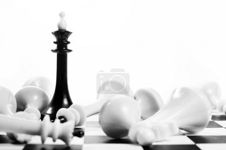 Black chess king among fallen enemies. Winner and losers