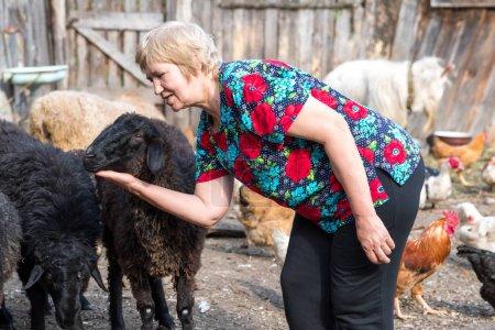 Frau auf ihrer Schaffarm, Tiere