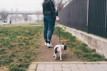 woman outdoor with french bulldog puppy