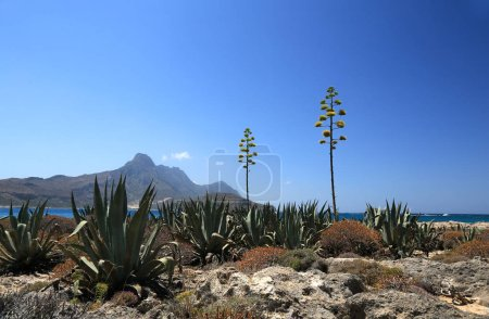 Gramvuosa desert island in Lybian sea.