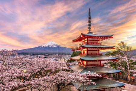 Fuji Japan in Spring