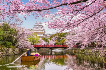 Photo for Himeji, Japan at Himeji Castle in spring season. - Royalty Free Image