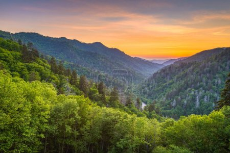 Photo for Great Smoky Mountains National Park, Tennessee, USA sunset landscape over Newfound Gap. - Royalty Free Image