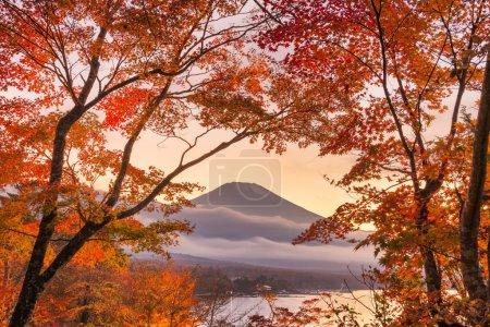 Photo pour T.-N. Fuji, au Japon, vue du lac Yamanaka avec un feuillage d'automne au crépuscule. - image libre de droit