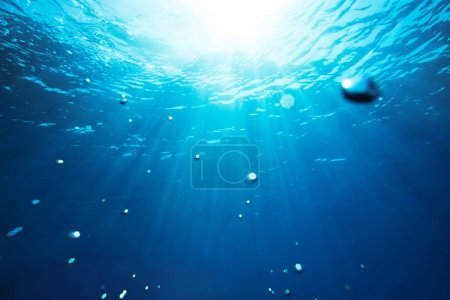 Photo for Sea underwater view with sun light. Beauty nature background - Royalty Free Image