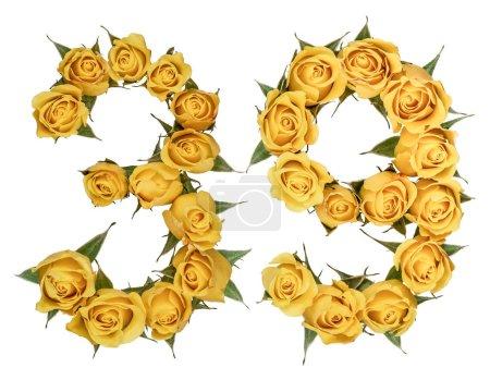 Photo pour Chiffre arabe 39, trente neuf, de fleurs jaunes de rose, isolé sur fond blanc - image libre de droit