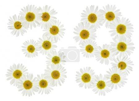 Photo pour Chiffre arabe 39, trente neuf, de fleurs blanches, de camomille, isolé sur fond blanc - image libre de droit