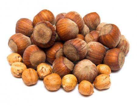 Pile of delicious hazelnuts