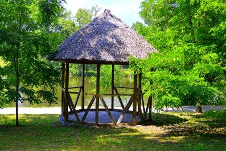 wooden gazebo near lake