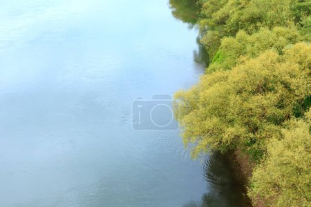 Photo for Top picturesque spring view of the Dnister river, willow and old wooden boat on riverside. - Royalty Free Image