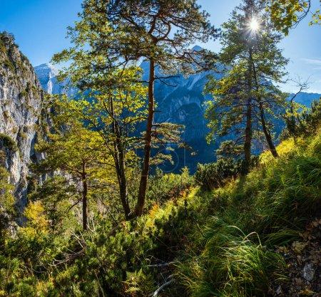 Photo pour Scène automnale ensoleillée et idyllique. Vue paisible des montagnes rocheuses depuis le sentier de randonnée près du lac d'Almsee, Haute-Autriche. - image libre de droit