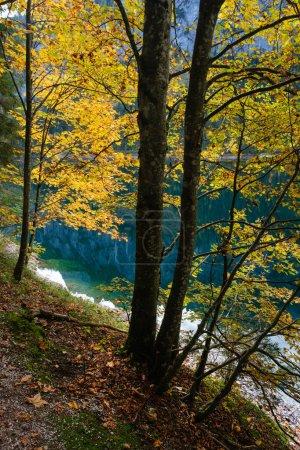 Photo pour Vue ensoleillée et idyllique sur les Alpes en automne. Lac de montagne paisible avec eau claire et transparente et des reflets. Gosauseen ou Vorderer Lac Gosausee, Haute-Autriche. Le sommet de Dachstein et le glacier loin. - image libre de droit