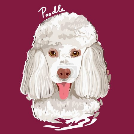 Illustration for A vector illustration of Poodle Painting Poster - Royalty Free Image