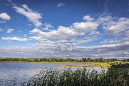 Lake in Zone of Alienation