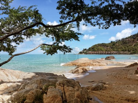 The sandy shores of the azure sea. Waves and trees. Koh Samui, Thailand
