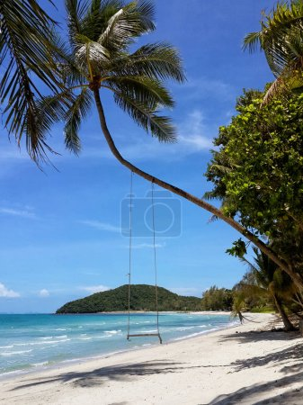 The sandy shores of the azure sea. Waves and palm tree with swing. Koh Samui, Thailand