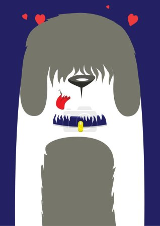 A large shaggy dog on a blue background