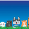 Cartoon dogs and cats on blue sky background. Cute...