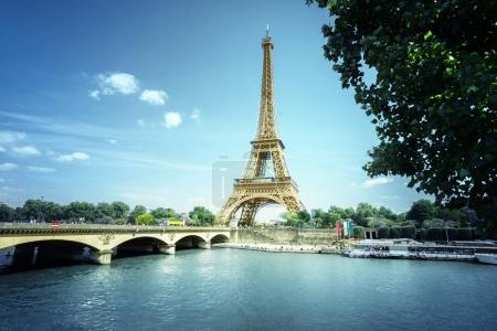 Photo for Eiffel tower, Paris. France - Royalty Free Image