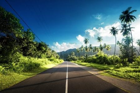 route de vide dans la jungle des îles Seychelles
