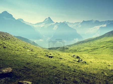 Photo for Grindelwald valley from the top of First mountain, Switzerland - Royalty Free Image
