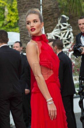 Photo pour Rosie Huntington-Whiteley assiste à la projection de «The Unkown Girl (La Fille Inconnue)» au 69ème Festival de Cannes. Cannes (France) 18 mai 2016 - image libre de droit