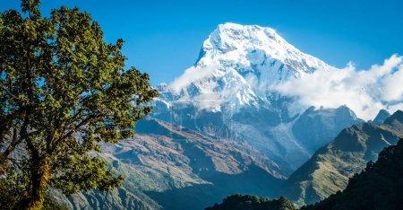 Photo pour Sommet de montagne belle couverte de neige contre le ciel bleu dans l'Annapurna, au Népal - image libre de droit