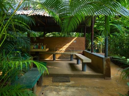 Wooden board table in tropical forest