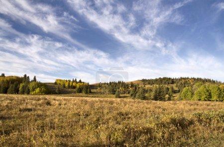 Autumn Colors Cypress Hills Canada