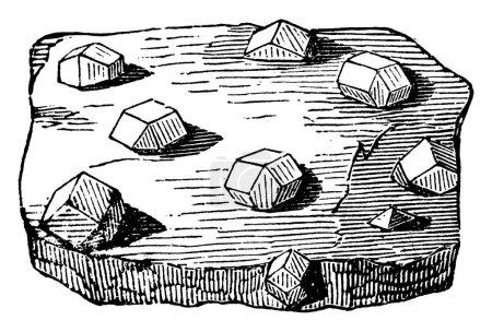 Granate verteilt durch einen Glimmerschiefer, Zeigt drei verschiedene Größen von Bildern von Granatstein darin, Vintage-Linienzeichnung oder Gravur