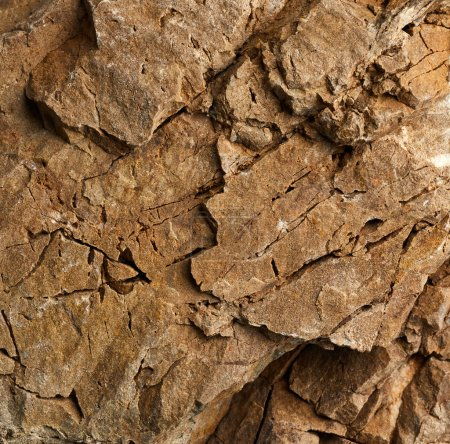 Photo for Textured surface of rock close up - Royalty Free Image