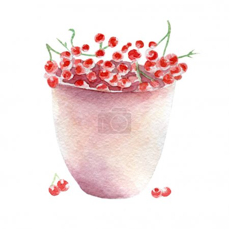 red currant illustration. Hand drawn watercolor on white background.