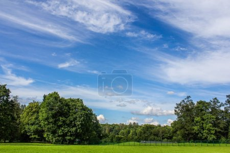 Photo for Summer field landscape with green grass and clouds in the sky - Royalty Free Image