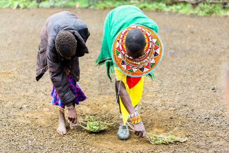 Massai women sweeping the floor