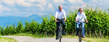 Photo for Seniors riding bicycle in vineyard together, panorama picture - Royalty Free Image