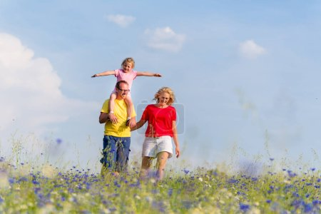 Family having walk on meadow with flowers
