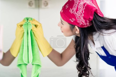 homemaker cleaning the home