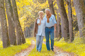 Senior couple walking in autumnal forest