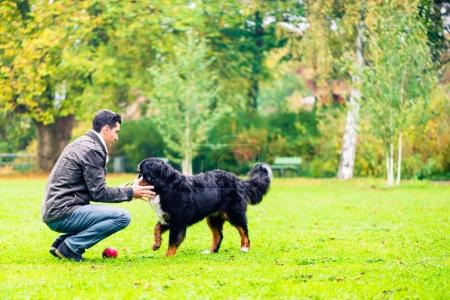 Dog retrieving ball for his dad in park