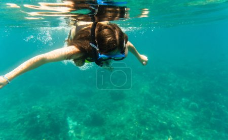 Photo for Woman diving or snorkelling in her summer vacation in clear ocean water - Royalty Free Image