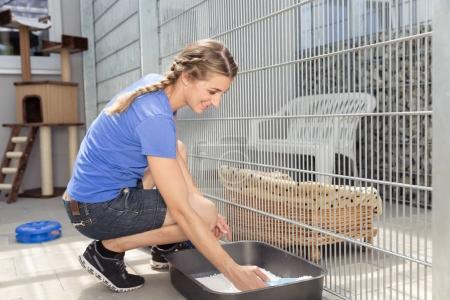 Zookeeper cleaning dog cage in animal shelter