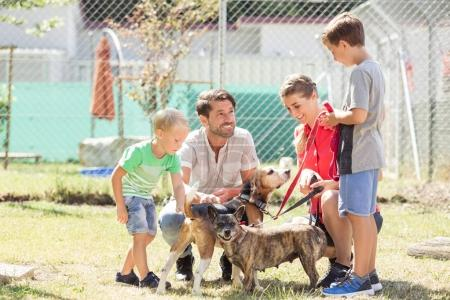 Mom with her sons walking dogs of an animal shelter
