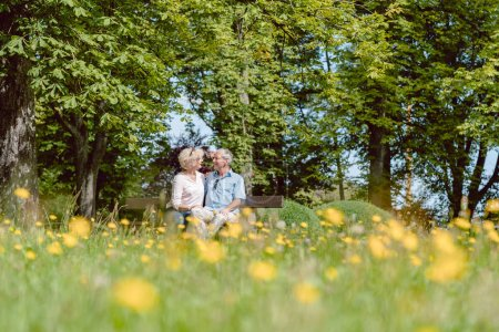 Photo for Romantic senior couple in love sitting together on a bench while dating outdoors in an idyllic park in summer - Royalty Free Image