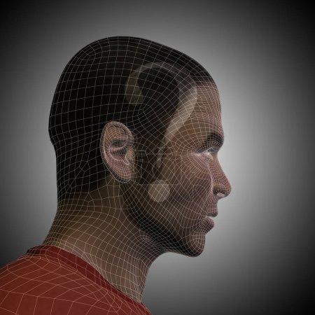 human male wireframe head