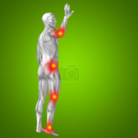 Human body with articular pain