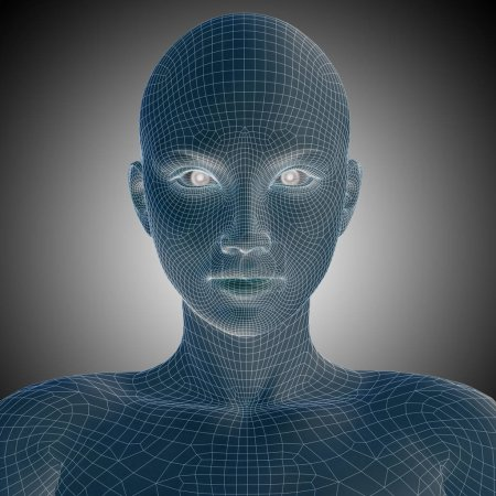 Wireframe young woman face