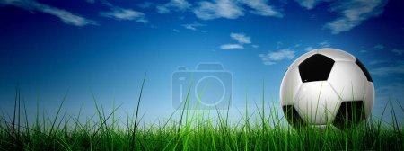 soccer ball on green field grass