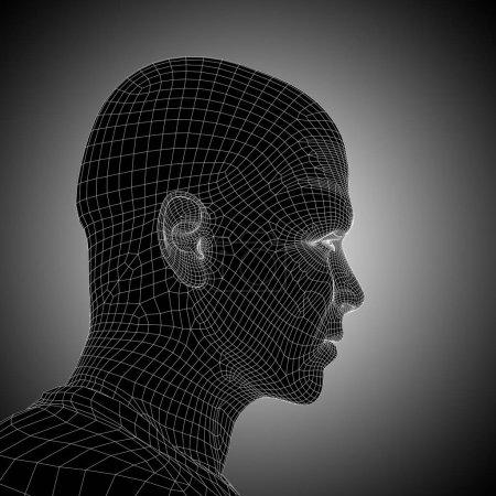 wireframe human head