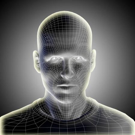 wireframe young human male  face