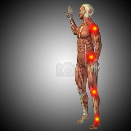 human body anatomy with pain signs